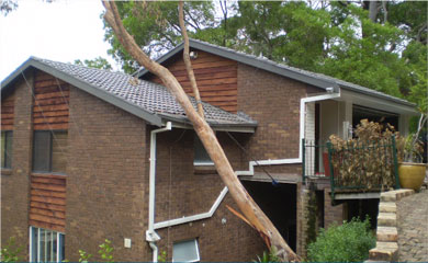 Residential Make Safe and Rectification – Tree Impact